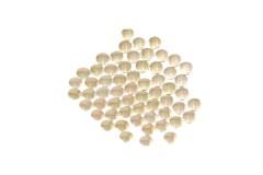 Nailhead studs Round 2 mm Copper